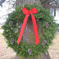 Traditional Wreath - 48