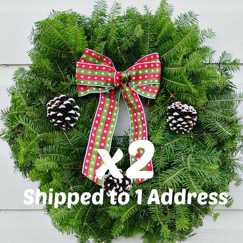 Christmas Joy PAIR - 18 inch ($24.50 each with this Deal)
